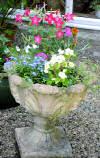 Hanging baskets and pots with summer flowers